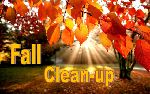 Spring & Fall Cleanup – Texas Lawn Tech